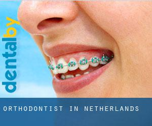 Orthodontist in Netherlands