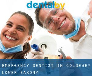 Emergency Dentist in Coldewey (Lower Saxony)