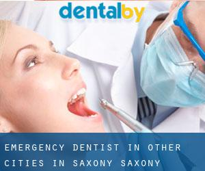 Emergency Dentist in Other Cities in Saxony (Saxony)