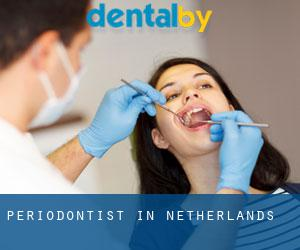 Periodontist in Netherlands