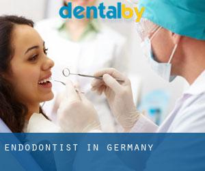Endodontist in Germany