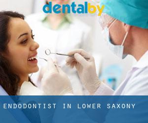 Endodontist in Lower Saxony